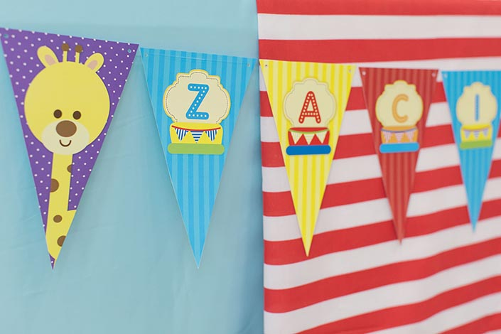 Sweet-Happy-Baby-Animals-themed-1-year-old-Birthday-Party-Photography-02