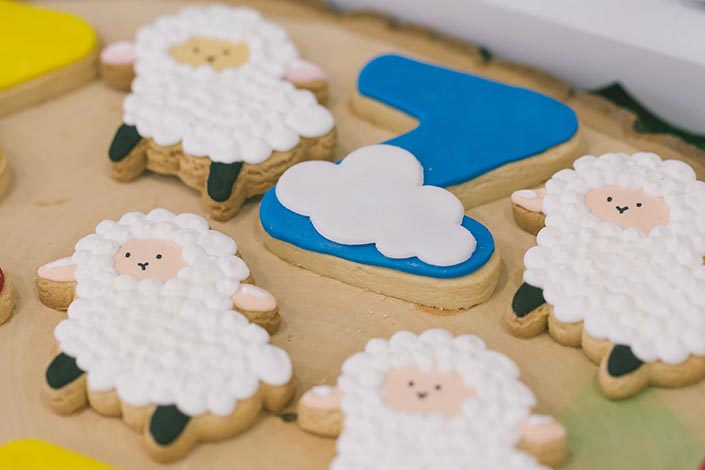 Sweet-Happy-Baby-Animals-themed-1-year-old-Birthday-Party-Photography-05