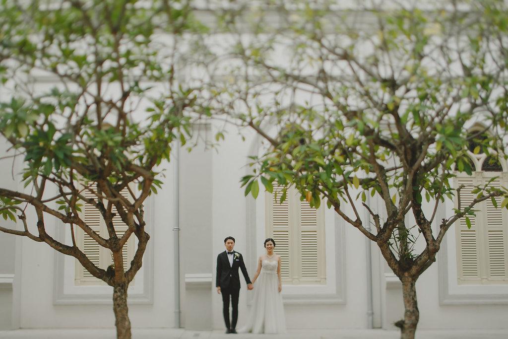 Jiayu & David's Wedding 26