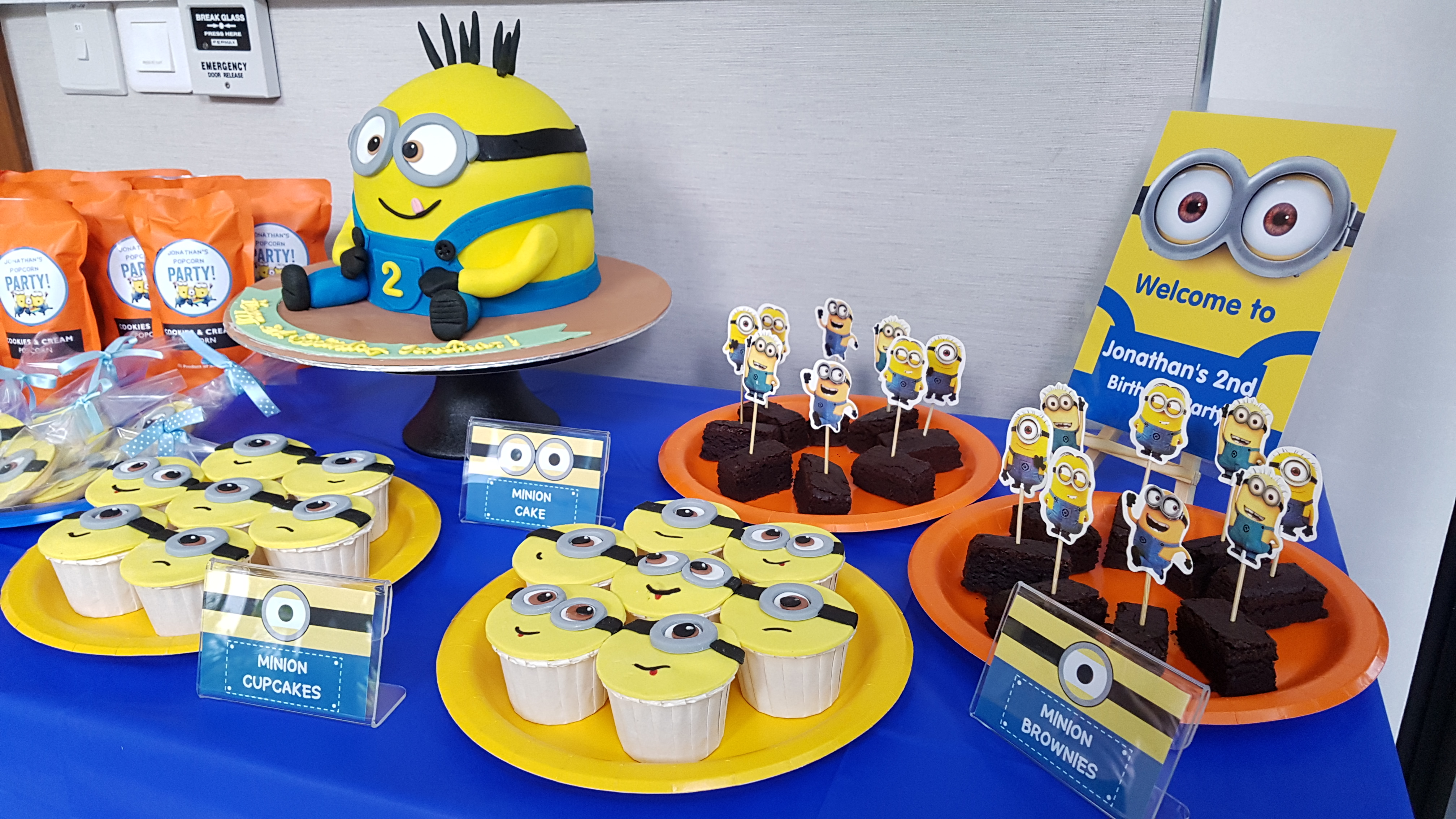 Jonathan's Minion Party6